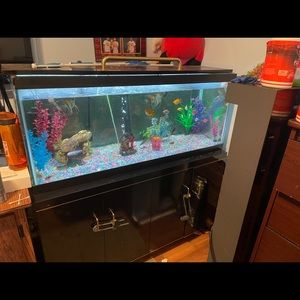 75 gallon fish tank canopy with stand only